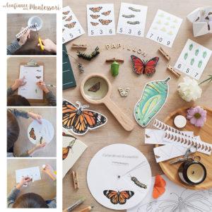 Cahier d'activités sur le thème du papillon Monarque