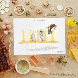 Affiche de l'oeuf à l'abeille