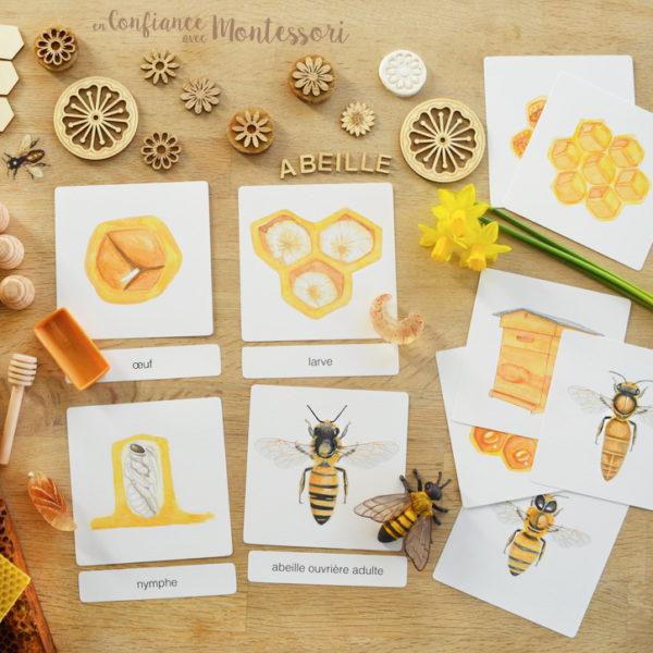 Images classifiées abeilles