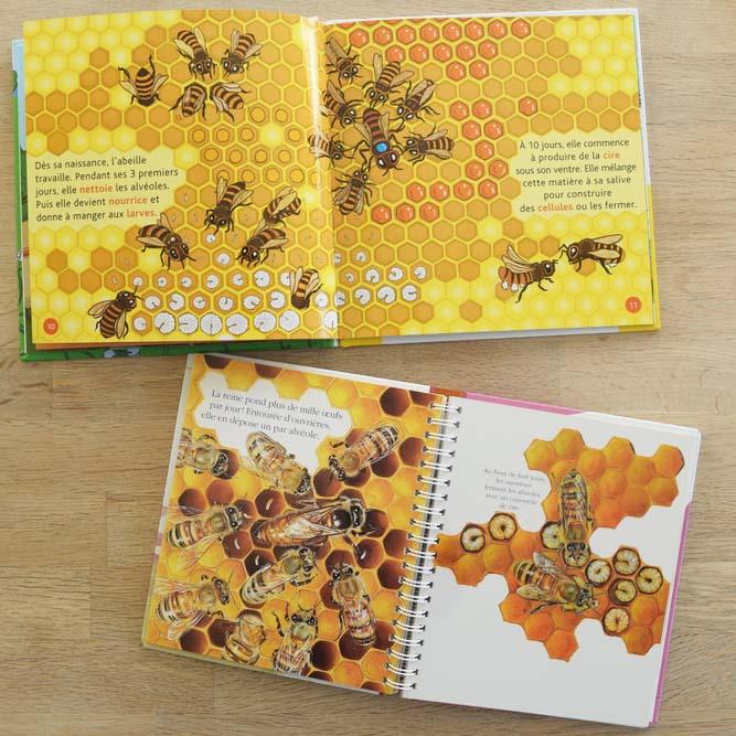 Livre 1 sur le thème de l'abeille