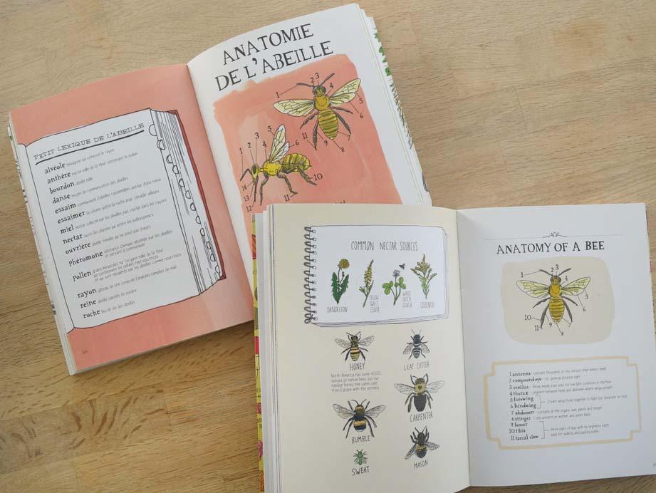 Livre 3 sur le thème de l'abeille