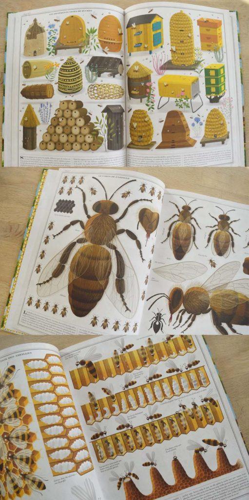 Livre 6 sur le thème de l'abeille