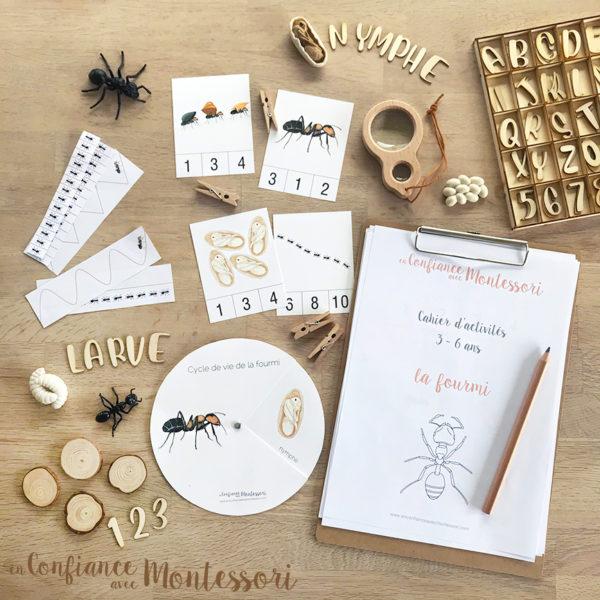 cahier d'activités d'inspiration Montessori sur le thème de la fourmi