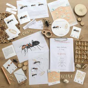 Pack d'inspiration Montessori sur le thème de la fourmi