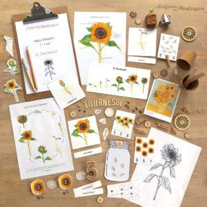 Pack d'inspiration Montessori sur le thème du Tournesol