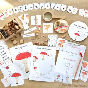Pack de matériel Montessori sur le thème du champignon
